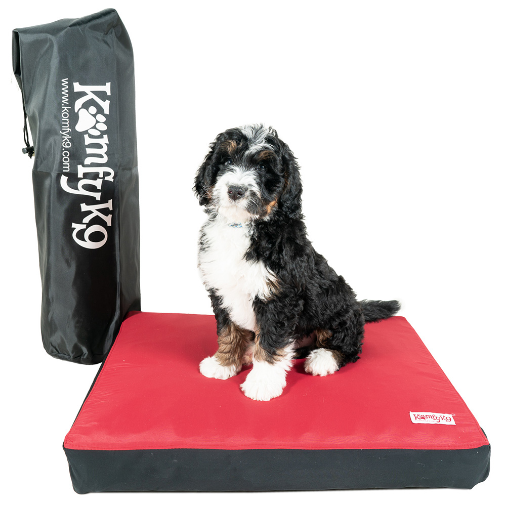 product photography of a dog on a Komfy K9 dog bed