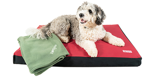 product photography of dog beds for Komfy K9