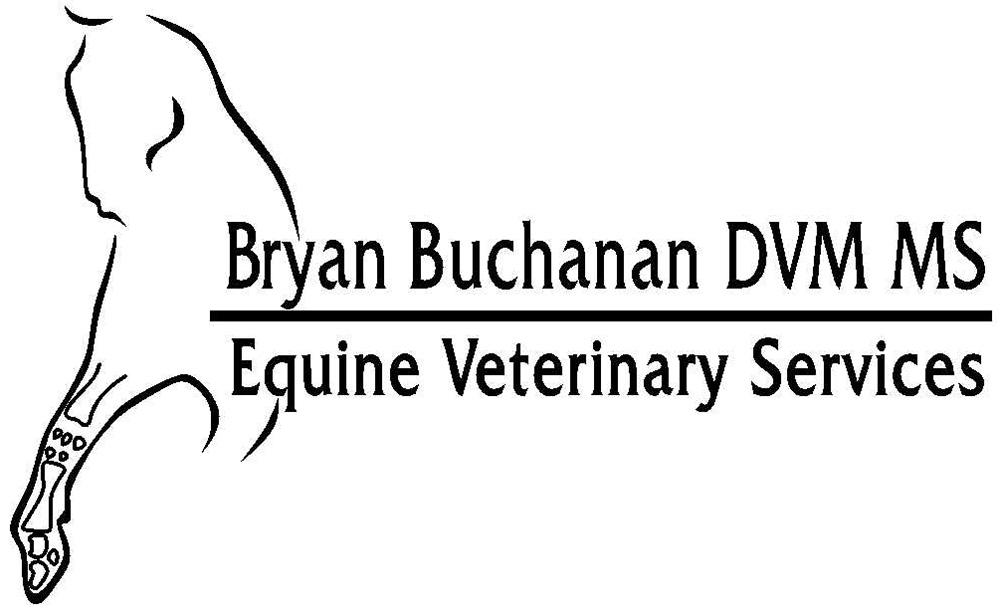 Bryan Buchanan Logo - BEFORE