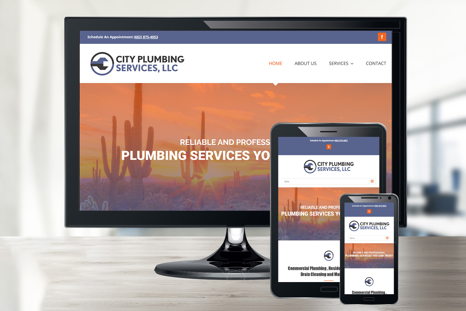 City Plumbing Services' Small Business Website in Cave Creek, AZ